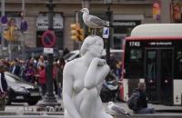 Möwe auf Skulptur am Placa Catalunya