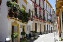 Calle de Don Pedro Nino