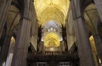 Gewölbe und Decke der Kathedrale