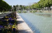Im Garten des Alcazar