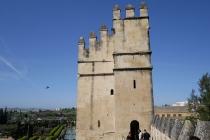 Turm des Alaczar
