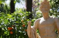 Werbung für Orangen? :-)