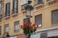 Alte Straßenlaterne mit Blumen darunter