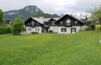 Blumenwiese mit Haus dahinter