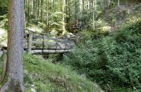 Holzbrücken in der Rehbachklamm