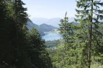 Schöner Blick auf den Hintersteiner See