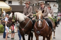 Reiterinnen auf Noriker-Pferden