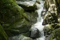 Das Wasser bahnt sich seinen Weg zwischen den Steinen