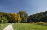 Herbstliche Färbung an der Donau