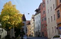 Platz mit herbstlichem Laubbaum in Regensburg