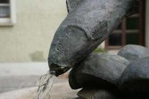 Wasserspeiender Fisch auf Brunnen