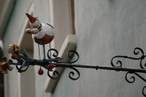 Storch an Hausfront in Kallmünz
