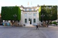 Quadratisch geschnittenen Bäume in Sevilla