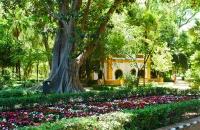 Schön angelegter Garten nahe dem Plaza de Espana