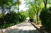 Park im Viertel Santa Cruz