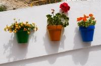 Blumentöpfe an einer Hausmauer in Setenil De Las Bodegas