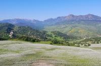 Landschaft nahe Montecorte