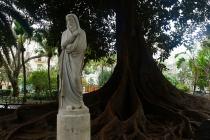 Alter Baum mit Statue davor