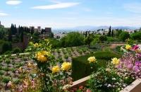 Blick auf die Gartenanlage des Generalife