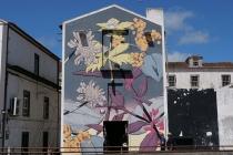 Graffiti-Haus in Ponta Delgada