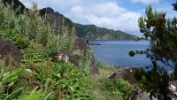 Blick auf das Meer und die Vegetation