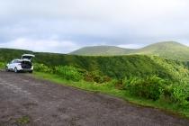 Tief grüne Landschaft