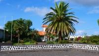 Große Palme vor einem Haus in Madalena
