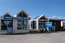 Diverse Kioske in Lajes do Pico