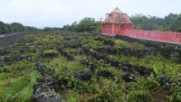 Weinanbau zwischen Steinmauern im Weinmuseum