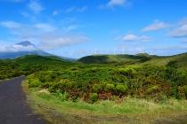 Was für eine grüne Landschaft!