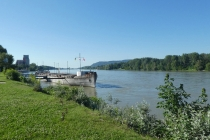 Die Donau nahe einem Rastplatz