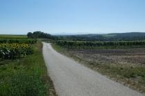 Radweg zwischen Ebenthal und Spannberg