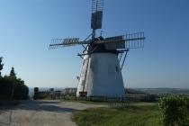 Alte Windmühle in Retz