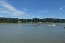 Blick über die Donau Richtung Orth an der Donau