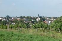 Blick über den Ort Auersthal