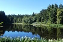 Fischteich nahe Voitschlag