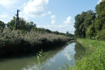 Wiener Neustädter Kanal bei Leobersdorf