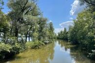 Seitengewässer des Chiemsee bei Rimsting