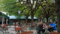 Biergarten des Stiegl Kloserhof unter alten Kastanienbäumen