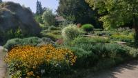 Irgendwo im Botanischen Garten