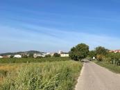 Fahrradweg kurz vor Jois