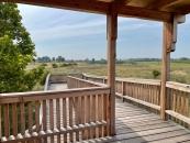 Aussichtswarte im Naturschutzgebiet in Illmitz